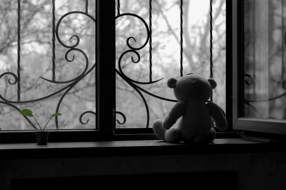 Teddy bear staring out the window.